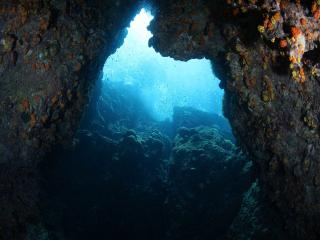 обои В пещере подводного короля фото