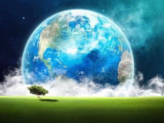 обои Земля и зелёное дерево фото