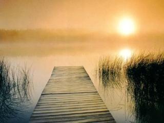 обои Утренний туман и солнце на озере фото