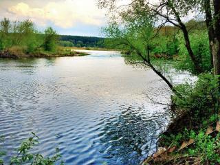 обои Река Воронеж фото
