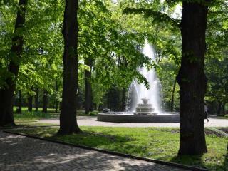обои Фонтан в парке фото