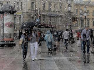 обои Питерский дождь фото
