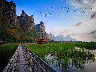 обои Национальный парк Таиланда фото