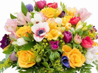 обои Букет многоцветья фото