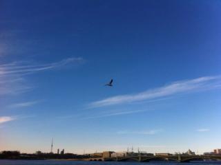 обои Петербургское небо фото