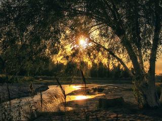 обои Прелесть летнего заката фото