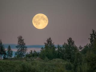 обои Так лунный свет овладевает миром фото