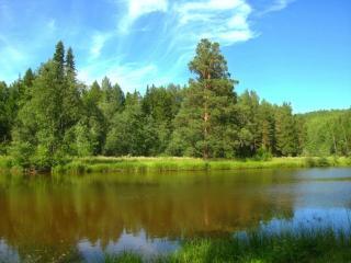 обои Уральское лето фото