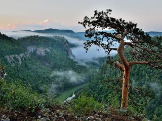 обои Вид на долину реки Нугуш фото
