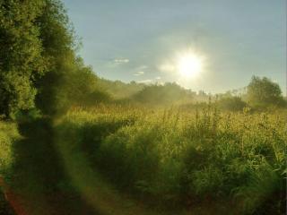 обои Восходящее солнце фото