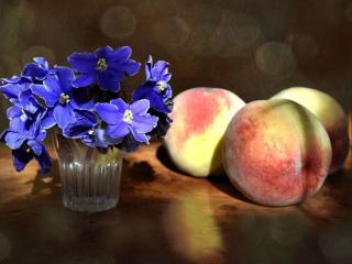 обои Синие цветочки с персиками фото