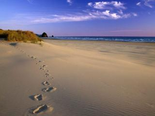 обои для рабочего стола: Следы на морском песке
