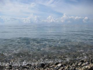 обои Утро на море фото