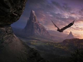 обои Вечерний полет орла фото