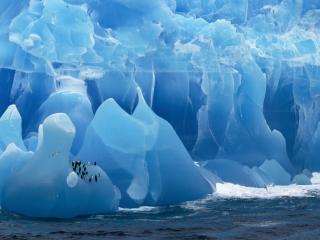 обои Ледяная обитель пингвинов фото