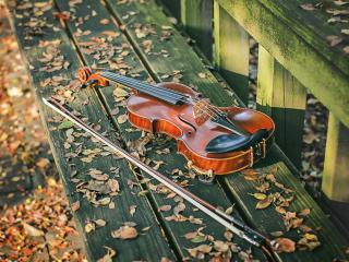 обои Скрипка на осенней скамейке фото