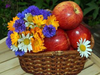 обои Яблоки и цветы в корзине фото