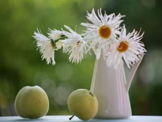 обои Яблоки с ромашками фото