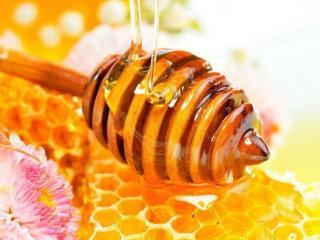обои Янтарный мёд фото
