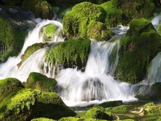 обои Водопад на зеленых камнях фото