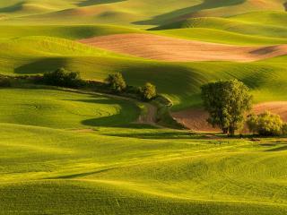 обои Петляющая дорога среди зеленых холмов фото