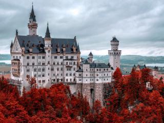 обои Многоэтажный замок в осенней листве фото