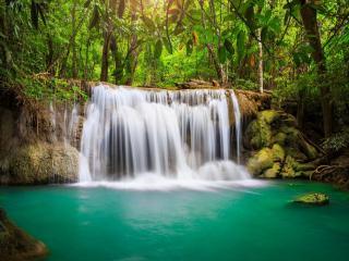 обои Маленький лесной водопад фото