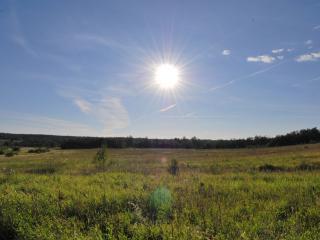 обои Вечернее летнее солнце фото