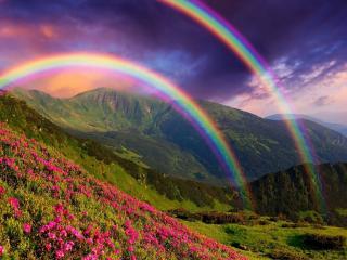 обои Над горами встала радуга фото