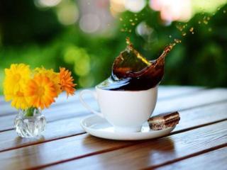 обои Утренний летний кофе фото