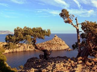 обои Вид на Голубую бухту и мыс Капчик. Крым фото