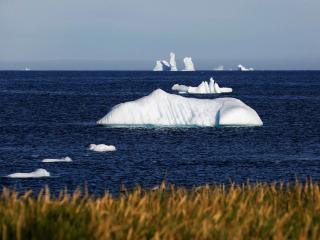 обои для рабочего стола: Айсберги у берегов Гренландии