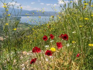 обои Окрестности озера Янина в северной Греции фото