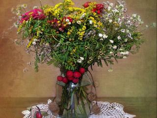 обои Цветы с шиповником фото