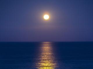 обои Лунный прожектор фото