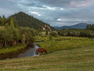 обои Алтайская тишина фото