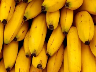 обои Жёлтые бананы фото