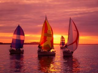 обои Три парусных яхты фото