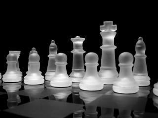 обои Шахматы фото