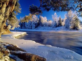 обои Река возле зимнего леса фото