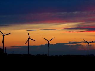 обои Ветряки на закате фото