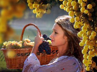 обои Девушка с виноградом. Крым фото