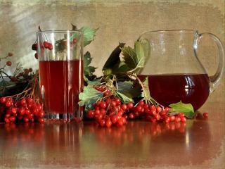 обои Калиновый напиток фото