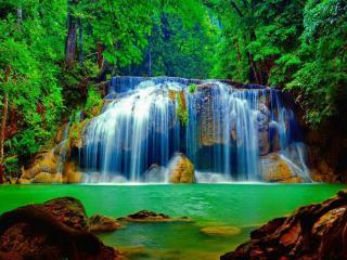 обои Красота лесного водопада фото