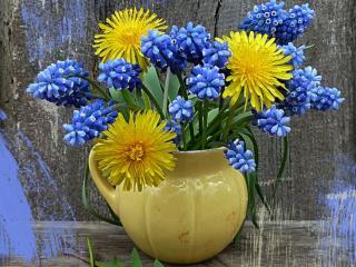 обои Жёлтое и синее фото
