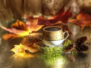 обои Кофе,   шишки и осенние листья фото