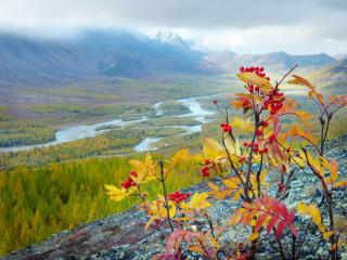 обои Осень в Хибинах. Кольский полуостров фото