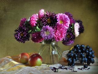 обои Астры,   яблоки,   виноград фото