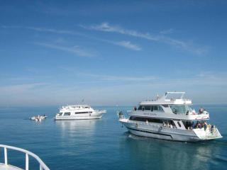обои Белые яхты в Красном море фото