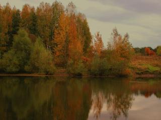 обои Осенний пруд. Подмосковье фото